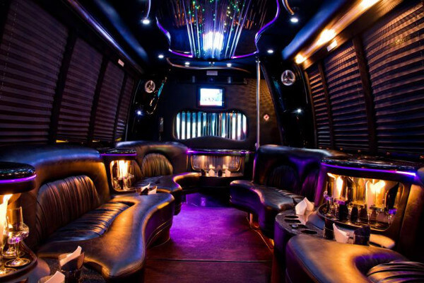 15 person party bus rental