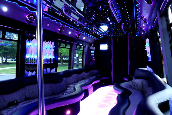 20 person party bus rental